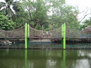 bridge at the kinder zoo