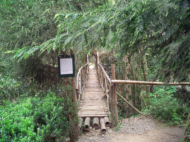 BRIDGING A NAME. The Ugnayan Bridge, built by an Ifugao artist, Mang Ugnay Buhhong