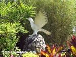spread-eagle