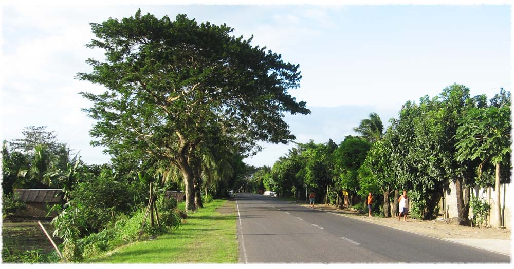 AH26 or Pan-Philippine Highway or Maharlika Highway