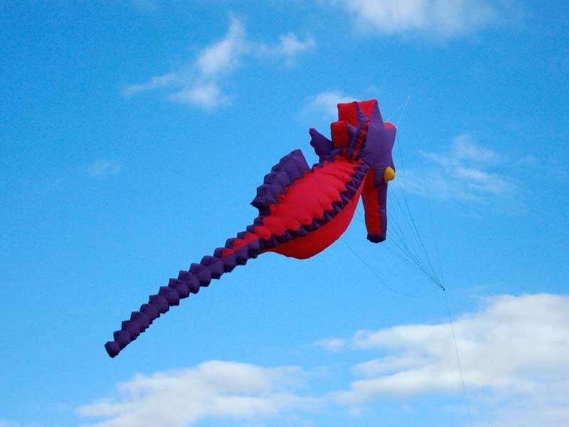 Seahorse kite