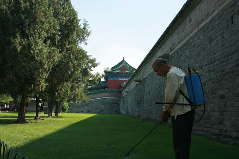Old timer in charge of the herbicide at Tiantan Park