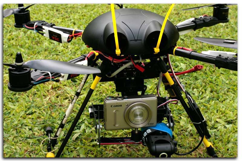Electronic Aerial Platform Integrated Surveillance System