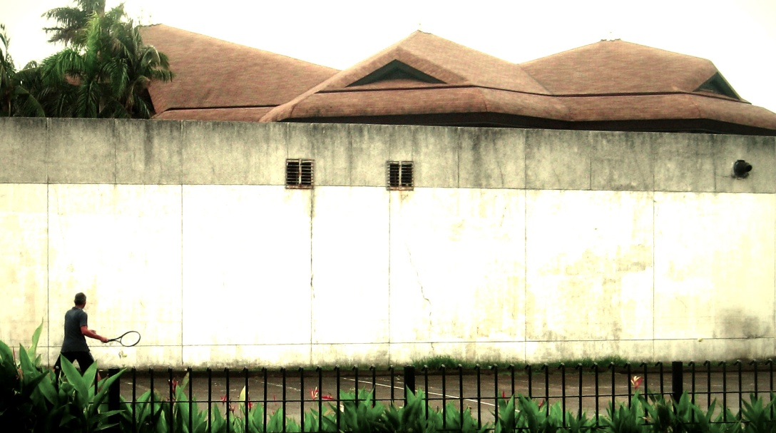 The Coconut Palace walls