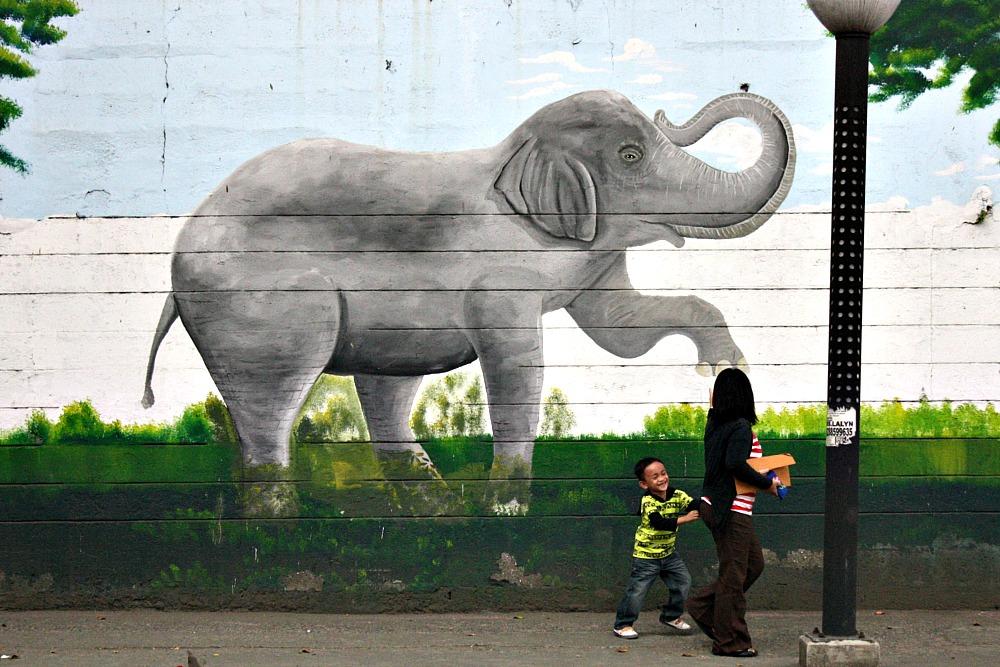 Street Art Manila, by Elmer Valenzuela, Manila Zoo, Malate