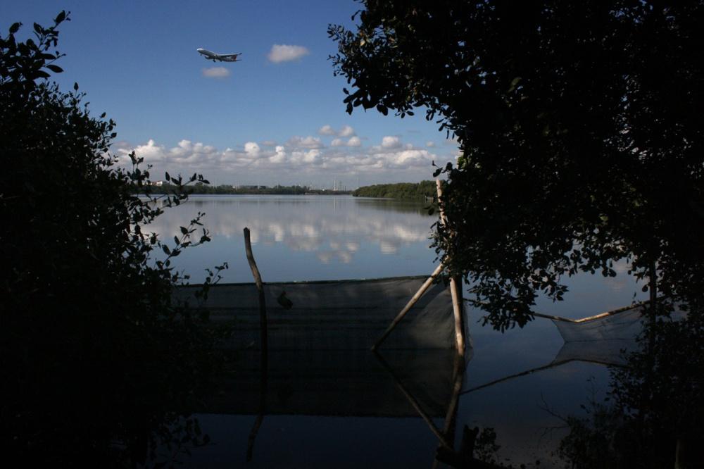 Waters of the Las Piñas-Parañaque Critical Habitat and Ecotourism Area