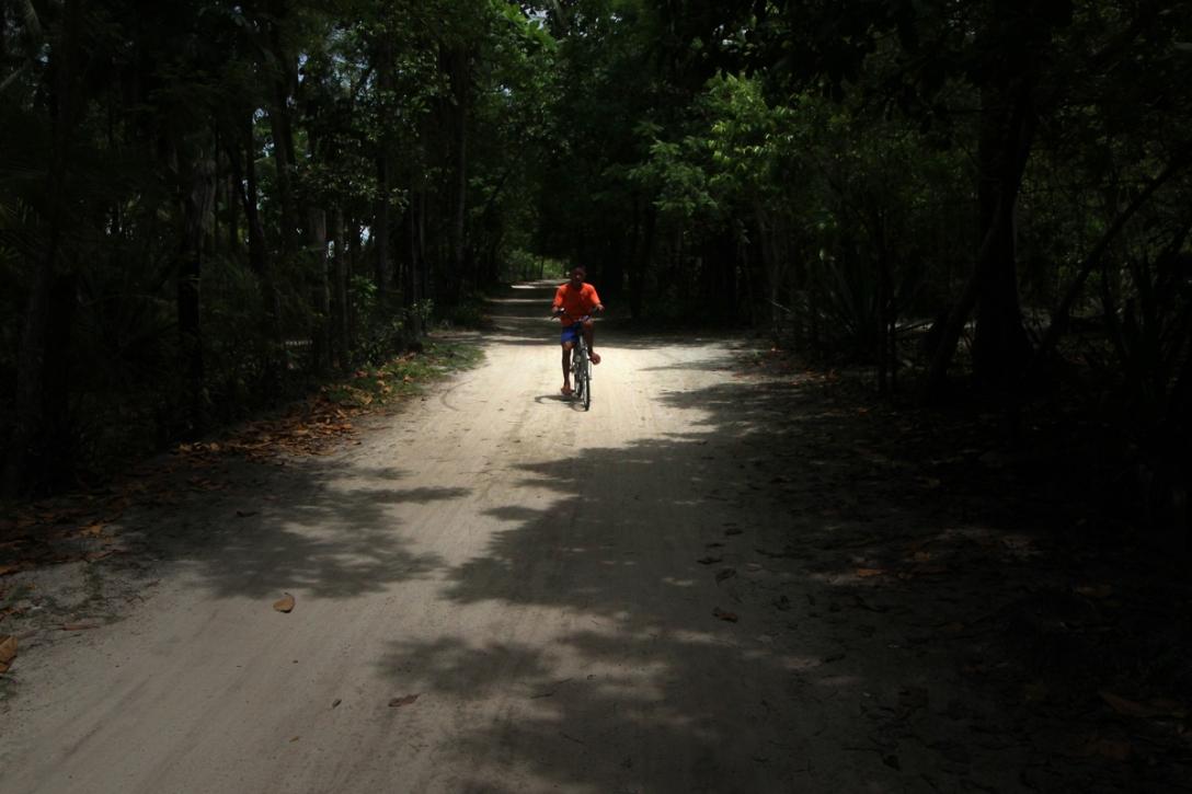 A boy biking through the forest of Maribagini in Olango Island