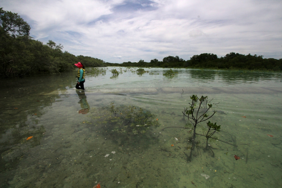 A young visitor wades through shallow waters of Olango Island Wildlife Sanctuary and Nature Park